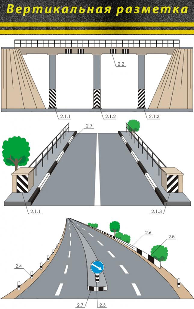 Инфографика вертикальная разметка